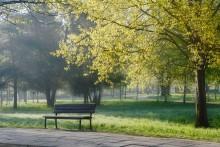 Весна ждет своих влюбленных! / Места для поцелуев в весеннем парке