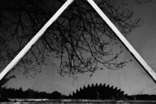 отражение / спина горыныч