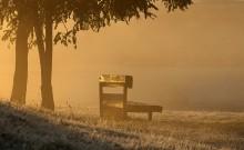 Осенние зарисовки / Морозное утро осеннего парка. Октябрь.