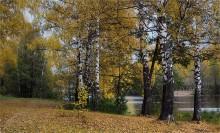 Воздух чист и прозрачен / Прогулки октября