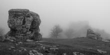 Заповедник Троллей / Крым, Демерджи. Зимние туманы в Долине Привидений.