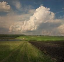 Что чувствуют облака перед дождём?.. / ***