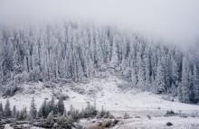 Снежныя хвалі / Горы. Снег тут з'яўляецца раней, і знікае пазней.  Цішыня. Спакой. Бадзёрасць.