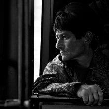 попутчик / автобусный портрет