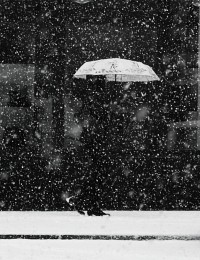 снегопад / весна