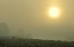 Рыбацкое утро / Рассвет туманным утром на Щаре.