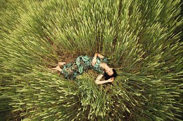 сон в пшенице /