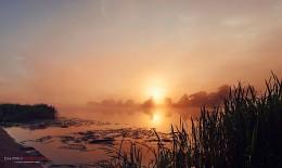 Туманный рассвет на реке Дубна. / Московская область,река Дубна,деревня Ратмино.