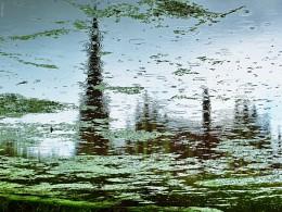 в Гервятах идет дождь / кап кап кап