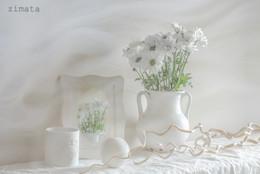 на белом / натюрморт в белом цвете