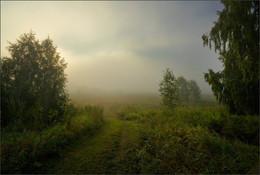 В туман / Утро, туман