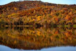 Вся в багрянце и золоте... / Золотая осень в Приморском крае.