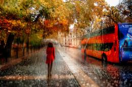 октябрьский дождь.. / Санкт-Петербург октябрь 2015 г.