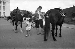 Takprosto про лошадей / Пони девочек катает, Пони мальчиков катает, Пони бегает по кругу И в уме круги считает.
