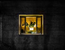 Свет в твоем окне / ...