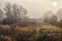 Высокие туманы ноября...2 / ...