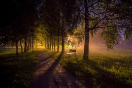 Ночная аллея / Загорские Дали....