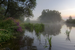 Рассвет,туман / Прохладное летнее утро......