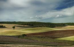 Осенние поля / Испания