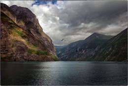 Свободный полет / Норвегия, фьорд.