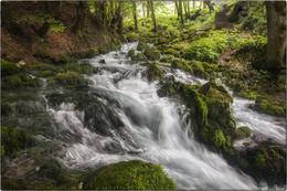 Горная река / Черногория