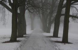 Такая зима... / Такая зима...
