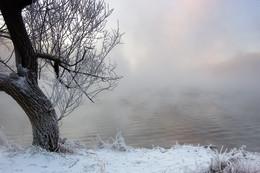 Рассвет,туман,иней / Морозным утром на незамерзающей реке...