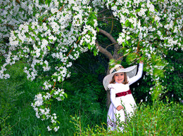 """Белым-бело / """"...Яблони в цвету зимою снятся...""""(Евгений Мартынов)"""