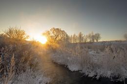 Рассвет,туман,иней.. / Солнца круг морозным утром Тихо-тихо поднялсЯ, За рекою встал, над лесом Свои руки разбросал  И полился свет на землю, Озаряя все кругом Поле, реку, лес, пригорок И дорогу в чей-то дом.  Отразился ото снега, Засветился в облаках, Согревая кроны сосен И гнездовья птиц в кустах  В этом свете всё проснулось, Засияло, ожило. Вся природа встрепенулась, Время в новый день вошло.  Свет проник сквозь чащу леса, ПролилсЯ на всех с небес, Озаряя людям лица,Проникая до сердец.(Леонидас)