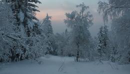 Зимний вечер / описание