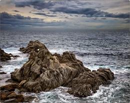 Чудище морское / Все в мире сбалансировано. Если где-то из пены морской выходят прекрасные Афродиты, то значит, в другом месте выползают отвратные чудища.