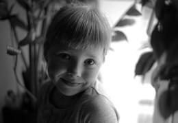 Портрет у окна / с фикусом на ЗП