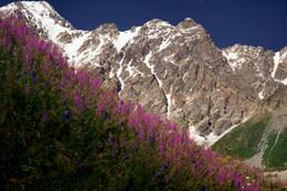 По дороге к девятой / Один из вариантов объяснения названия горы Шхара - «девятая вершина», от чхара – «девять» (сван./груз.). Действительно, если считать с запада в сторону повышения высоты, то главная вершина Шхары будет девятой. Так же называется и ледник, стекающий с юго-восточного склона массива, переходяший в горный поток, из которого рождается река Ингури.