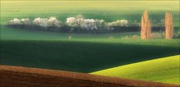 / Чехия, Южная Моравия. Осень 2014 - весна 2015г. Приглашаю в апреле в эти же и иные места:  http://photoclub.by/blog/3896  2 [img]https://img-fotki.yandex.ru/get/38393/1623550.27/0_a60e5_1bfc5c8d_orig.jpg[/img]  3 [img]https://img-fotki.yandex.ru/get/67504/1623550.27/0_a616f_1213b7e3_orig.jpg[/img]  4 [img]https://img-fotki.yandex.ru/get/6311/1623550.27/0_a60de_7943180f_orig.jpg[/img]  5 [img]https://img-fotki.yandex.ru/get/72233/1623550.27/0_a60e7_d35189a0_orig.jpg[/img]  6 [img]https://img-fotki.yandex.ru/get/64820/1623550.27/0_a60e6_2dcb9b5_orig.jpg[/img]  7 [img]https://img-fotki.yandex.ru/get/64820/1623550.27/0_a60e8_5f9d20fb_orig.jpg[/img]  8 [img]https://img-fotki.yandex.ru/get/63971/1623550.27/0_a6173_ee23da6a_orig.jpg[/img]  9 [img]https://img-fotki.yandex.ru/get/27964/1623550.27/0_a60e9_1d915e42_orig.jpg[/img]  10 [img]https://img-fotki.yandex.ru/get/4102/1623550.27/0_a6172_ad714609_orig.jpg[/img]