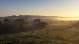 Рассвет,туман / Утреннее дыхание......