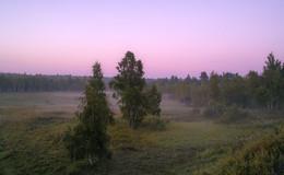 Рассвет,туман / Розовый рассвет...