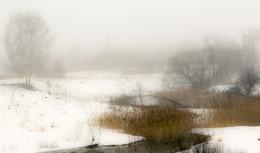 Рассвет,туман / Весна идёт...весне дорогу.....