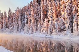 зимний этюд / вечерние прогулки у реки