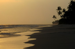 *На берегу океана** / В лучах уходящего солнца