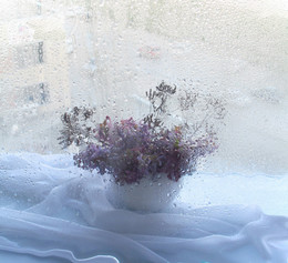 Весна рано или поздно возвращается / ....