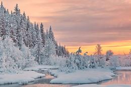 кружева зимы / Зимние вечерние прогулки на закате солнышка.