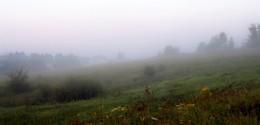 Туман в дачном посёлке / ***