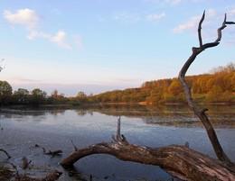 """.""""Лохнесское"""" чудовище... / Старый пруд, апрель"""