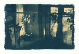 Закатное трихвостье / Цианотипия-II, 26х17см. Перепечатал старую работу в новой технике. Можно сравнить: http://photocentra.ru/work.php?id_photo=133072&id_auth_photo=4029