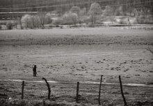 / Это фото было сделано 29 марта по дороге из Трускавца во Львов, из окна движущегося на полной скорости поезда, а посему его качество оставляет желать лучшего. Мне оно понравилось своим настроением, которое в этот момент было «созвучно» с моим.