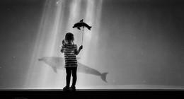 девочка и дельфин / sony a7 e30macro Japan