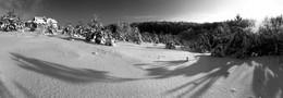 Без названия / Один из ярких зимних дней в Белорусской деревне (Минская область).