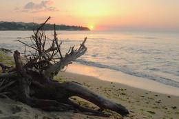 солнце и море утренний восход / Море Черное и восход % с утра