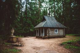 Лесной домик / Пушкинские горы , дорога на село Михайловское