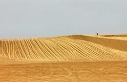 не бермудский треугольник / Пустыня Сахара. 2016 г.